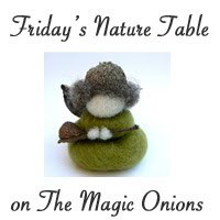 Friday's Nature Table on The Magic Onions