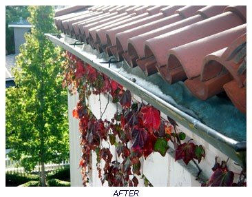 HAPPY GUTTER AFTER CLEANING