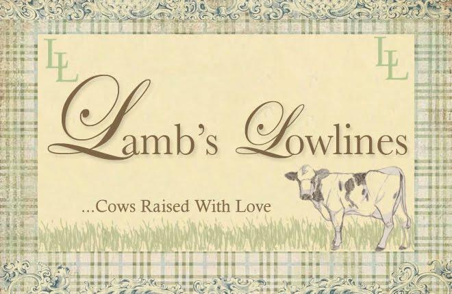 Lamb's Lowlines