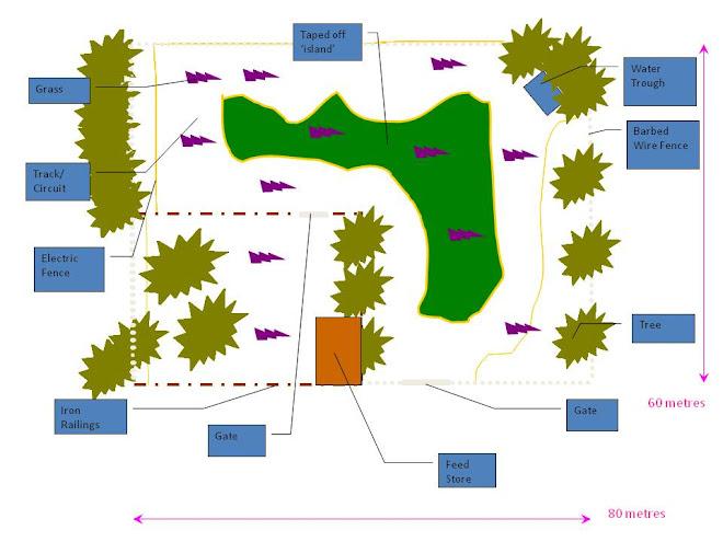 Nursery Circuit