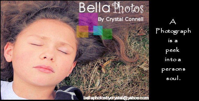 Bella Photos By Crystal Connell