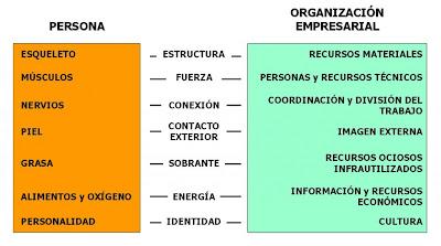 analogía entre empresa y persona