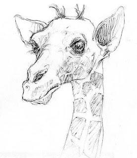 Bastien laurent dessin croquis d 39 animaux - Croquis animaux ...