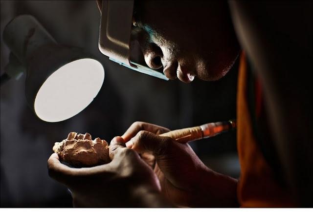 الحياة في إفريقيا - عالية الدقة - 24
