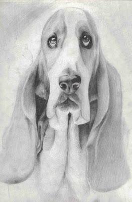 algunos perros dibujados a lapiz