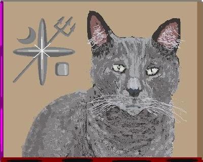cat belonging to harry potter