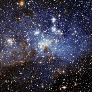 http://2.bp.blogspot.com/_e0O85IU7krI/TSHDkR9NcyI/AAAAAAAAECw/42ZZXbqZQK0/s1600/cosmos.jpg