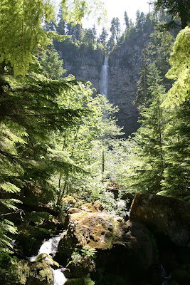 2008-07-08_43_OR138_Umpqua River_OR_b.jpg