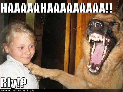 funny laughing pic
