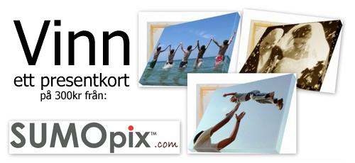 http://2.bp.blogspot.com/_e4ca7EI_frE/TO0mVBHZuyI/AAAAAAAAEo4/yXd87Hubhpg/s1600/svenskbilledekonkurrence.jpg