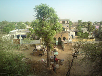 View from the terrace in a Rajasthani village