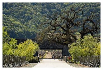 Herzog Winery Los Angeles Tour