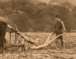 Turnrest Plough 1900