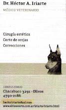 Cirugia Estetica de Orejas                               Dr.Hector Iriarte