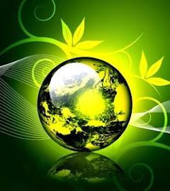 Preserve o planeta, respeite o Meio Ambiente