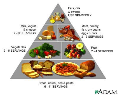food pyramid are such food