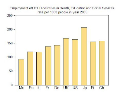 15. Employment in Social Services in OECD countries: Europe, United States and Japan. Euro-American Association Report 2010.