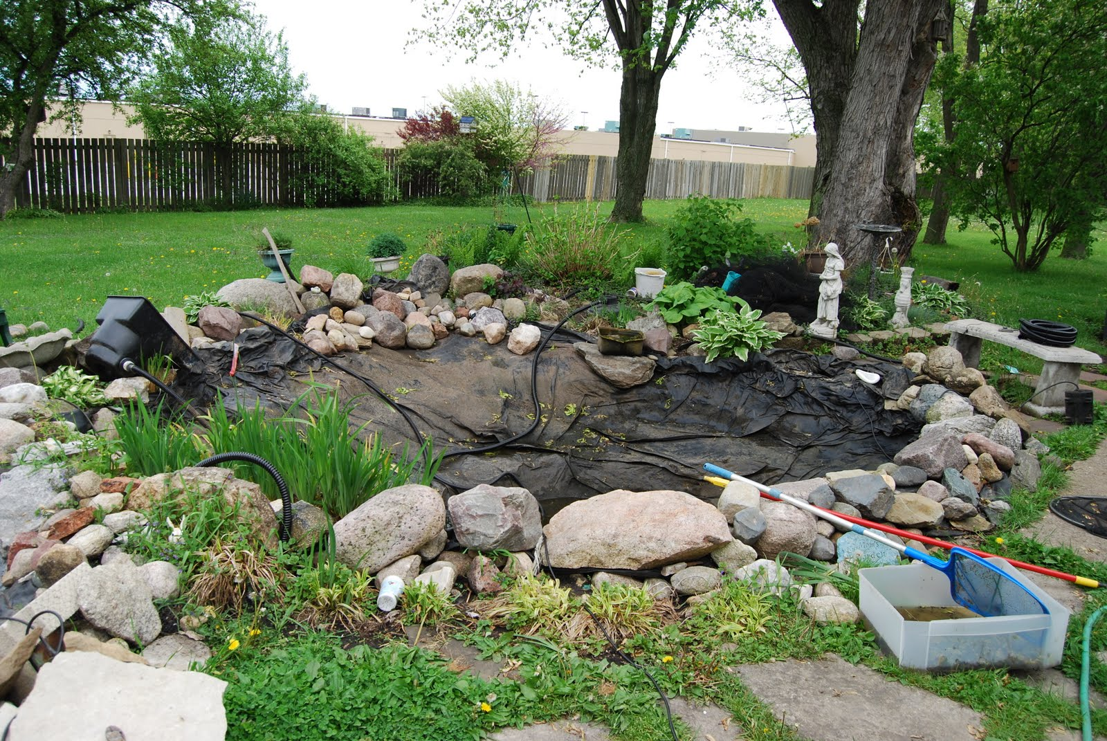 Musings of the sixties spring cleaning koi pond style for How to make koi pond water clear