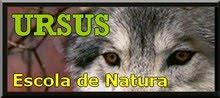 Web d'URSUS