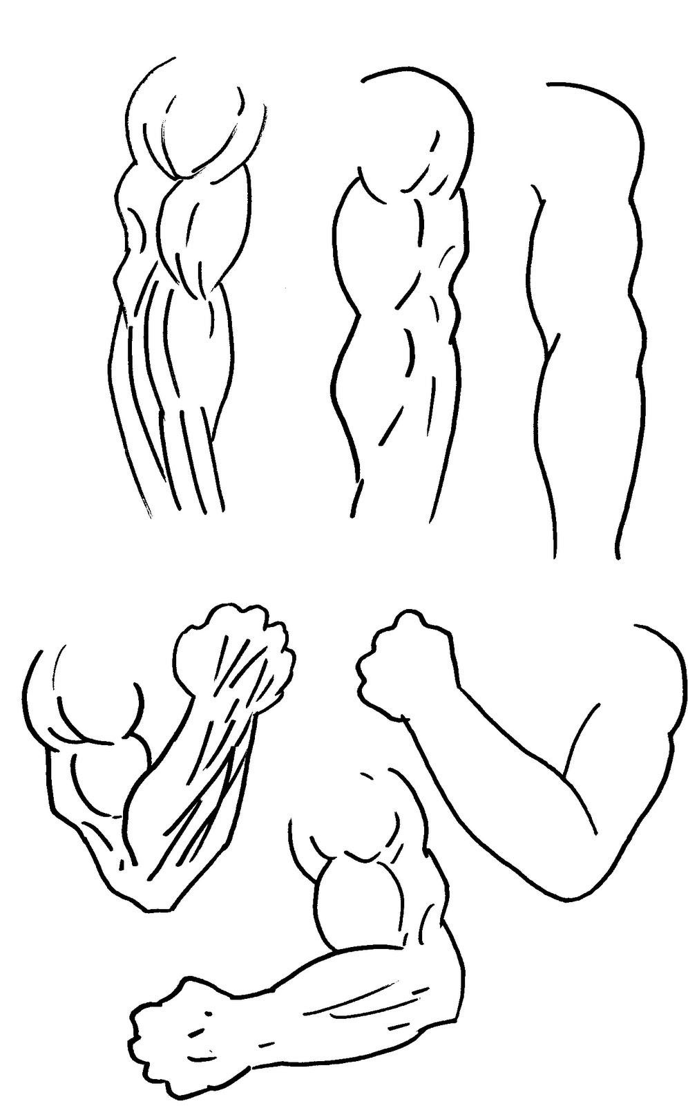 Musclearmtattoo