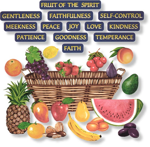 Points Of View Discussion Blog Of The Fruit Of The Holy