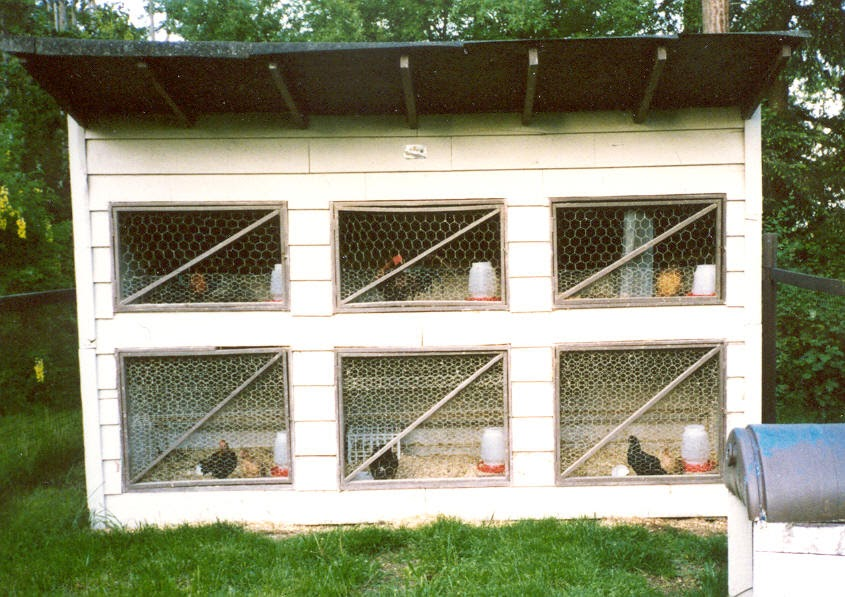 Chicken coop plans with material list build small for Chicken coop designs for 3 chickens