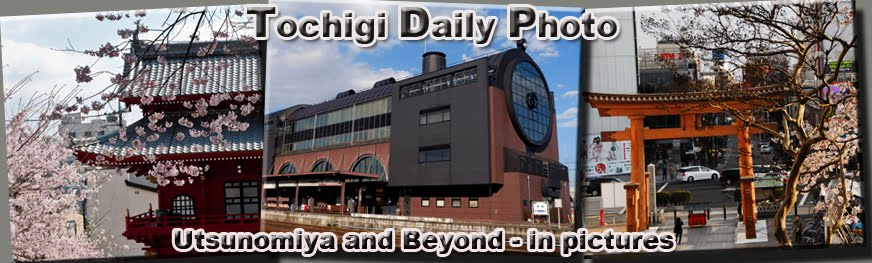 Tochigi Daily Photo