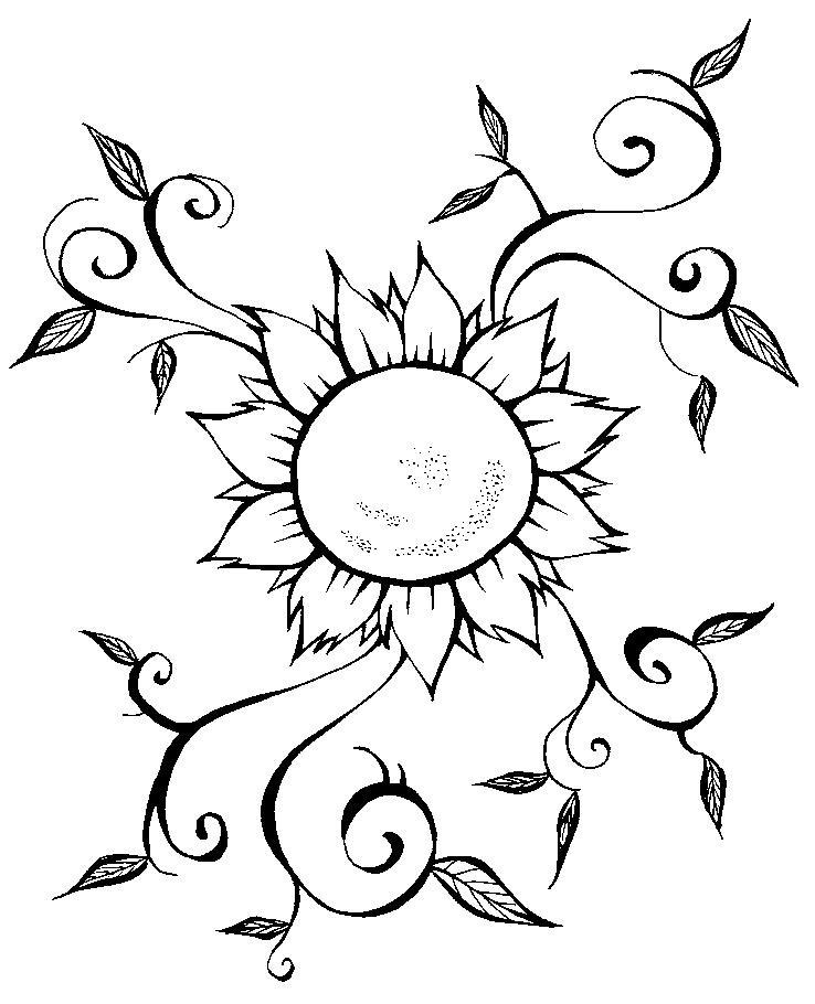 Desenho  De Ramo De Flores Para Imprimir E Colorir