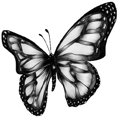 Manos de Mariposa