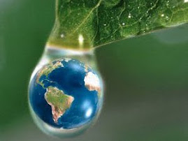Salve o planeta.