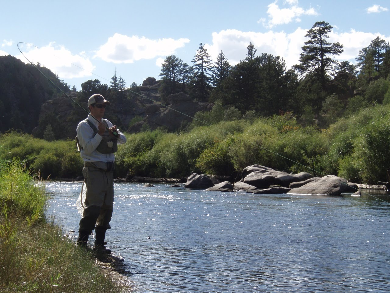The fly fishing mind of jeff allen on the river 11 mile for Eleven mile canyon fishing report