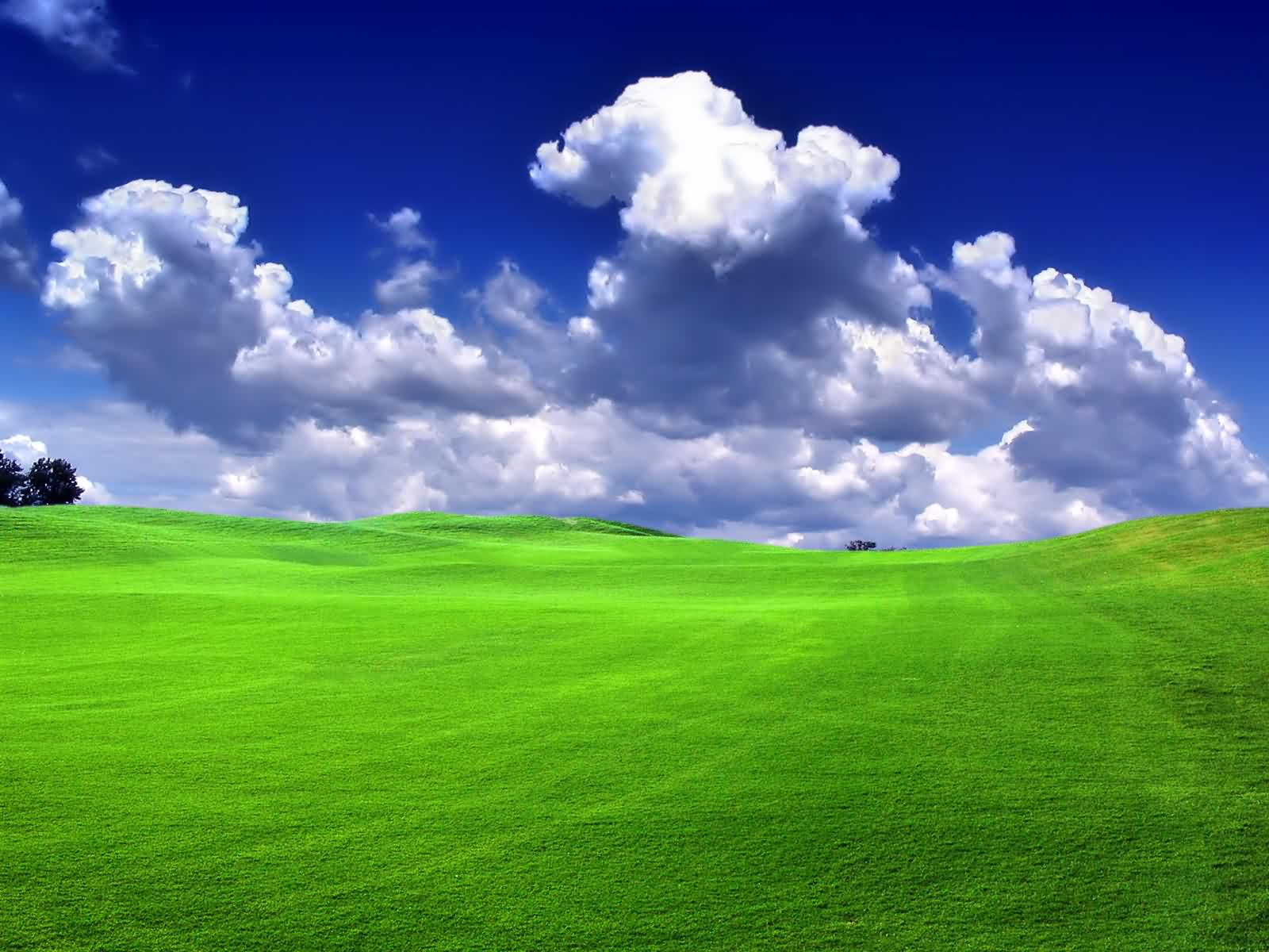 Beautiful Green Grass And Blue Sky Cloud