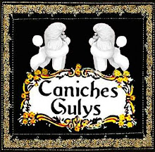 CANICHES TOY GULYS