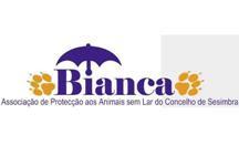 """""""BIANCA - Associação de Protecção aos Animais sem Lar do Concelho de Sesimbra"""""""