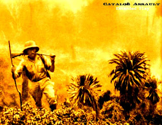 Album Catalog Assault by Sonace