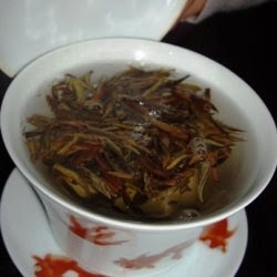 brewing the zi ya pu erh in a gaiwan
