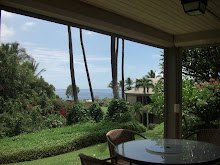 Hawaii Condo For Rent