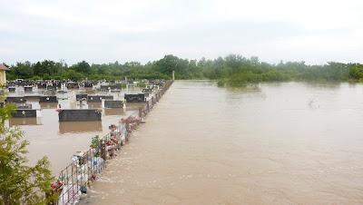 Poplava u Novom Selu