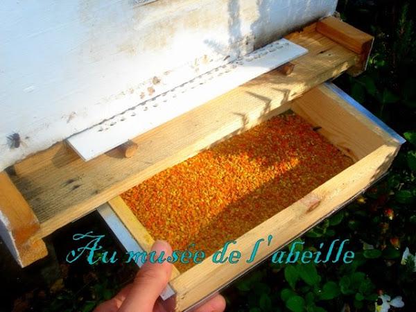 Trappe à pollen