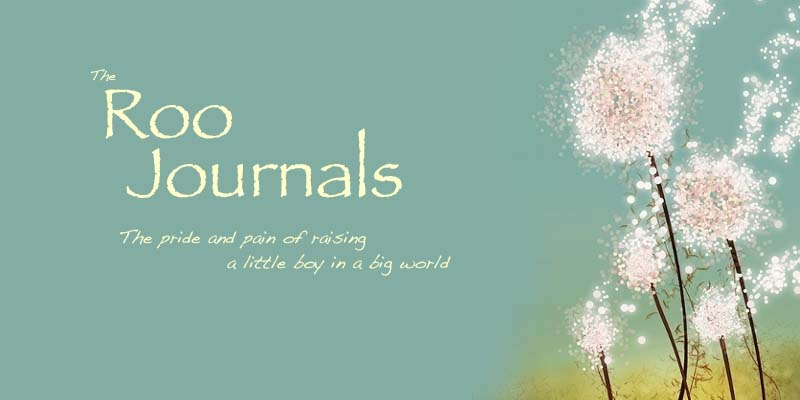 The Roo Journals