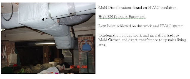 mold in HVAC duct with High Humidity in basement.