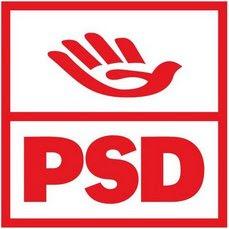 Nuevos Tiempos (PSD) Nuevo_logo_PSD