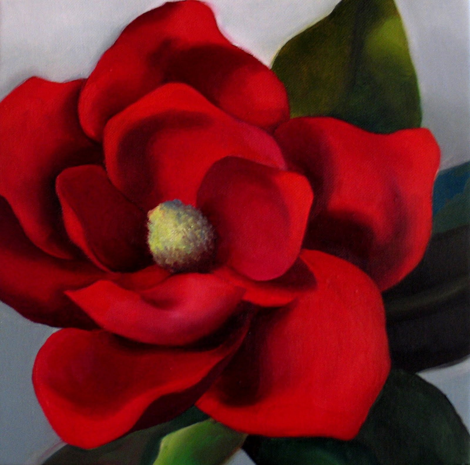 Image Gallery Red Magnolia
