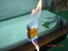 Segunda Etapa de Caramelización