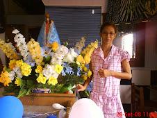 Visita de Nossa Senhora no setor N. S de Fátima
