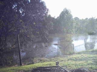 Maitland Floods 2007
