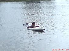 aktiviti menyelamatkan bot