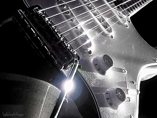 Fender Stratocaster Electric Guitar in Black and White Lense Flare buy electric guitars online