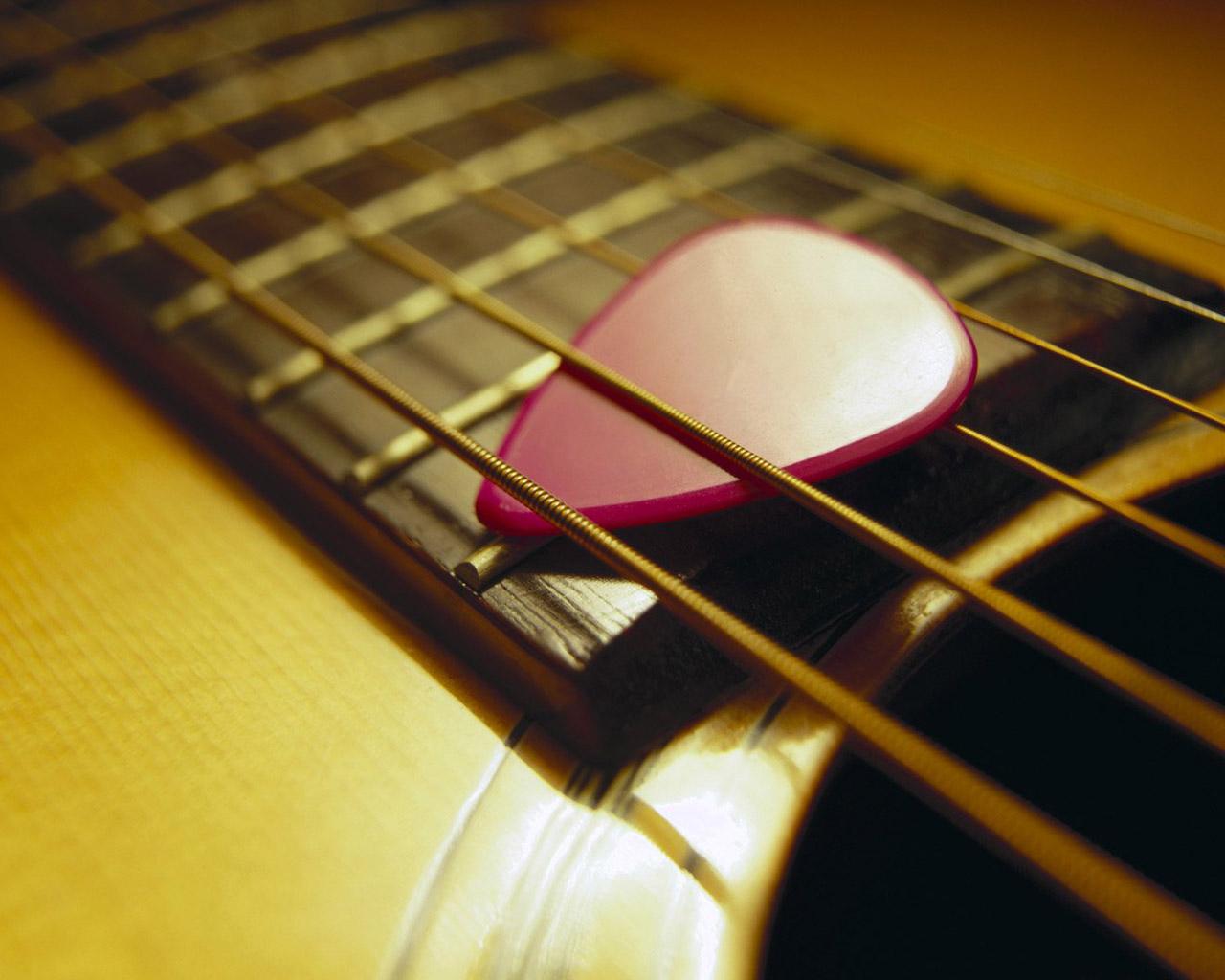 http://2.bp.blogspot.com/_eYNXA0gKwI0/TPQVpE5EVKI/AAAAAAAAACc/0WVQ82JwlLE/s1600/Acoustic+Guitar+Plectrum+greatguitarsound.blogspot.com.jpg