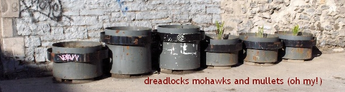 Dreadlocks Mohawks and Mullets (oh my!)